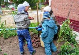 Урожай собирай – для обедов припасай
