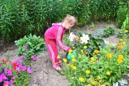 Наш огородик