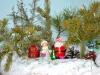 Выставка «Подарок на Рождество»
