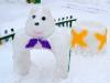 Зимние участки на радость воспитанникам