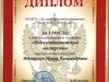 Диплом - Венгерская И.А.