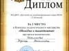 Шакмаева(диплом)